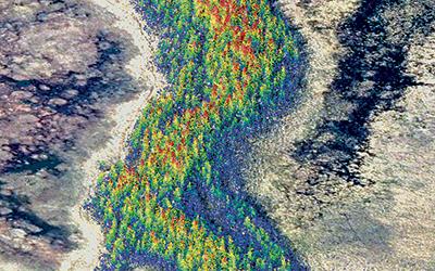 Wetland Classification for a Boreal Wetland Complex